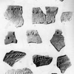 Фрагменти керамічних посудин волинської культури. Середина V - початок ІІ тис. до н.е.