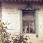 с. Нові Петрівці, Київщина, серед. ХХ ст. Слайд М.Селівачова, 1981 р.