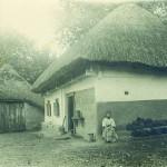 Двір з типовою хатою селянина центральної Полтавщини. Фото 1930 р.
